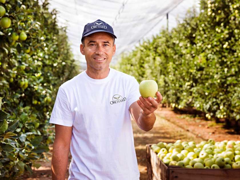 5 trucos para conservar las manzanas más tiempo