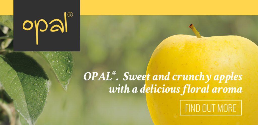 Opal apple. Banner home | Orchard Fruit